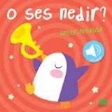O Ses Nedir? - Enstrümanlar (Sesli Kitap)