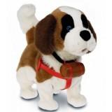 Samby İnteraktif Canım Köpeğim