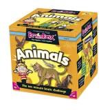 BrainBox Animals İngilizce Kelime Öğrenme (Anne Okul Oyunları)