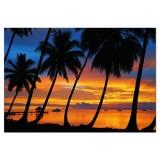Educa 1500 Puzzle Bora Bora 15527