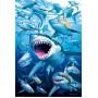 Educa Puzzle Shark Club 500 Parça Puzzle 17085