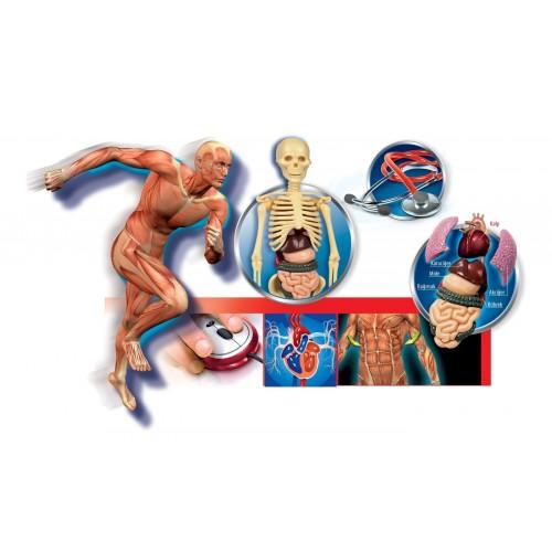 Clementoni Deney Seti - İnsan Vücudu 64944
