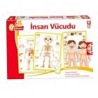 Educa Eğitici Oyunlar İnsan Vücudu 15226