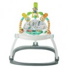 Fisher Price Renk Karnavalı Katlanabilir Jumperoo FDG98
