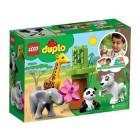 Lego Duplo Yavru Hayvanlar 10904