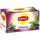 Lipton Bitki Çayı Adaçayı 20 li