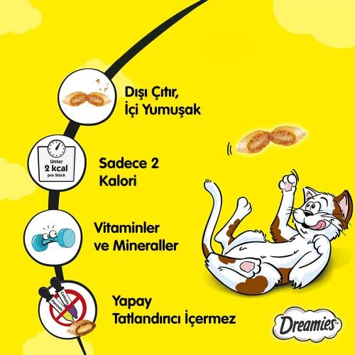 Dreamies Somonlu Kedi Ödül Maması 60 gr
