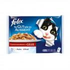 Felix Etli Yaş Kedi Maması 4 Adet x 100 Gr (Avantajlı Paket)