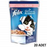 Felix Pouch Somonlu Yaş Kedi Maması 100 gr x 20 Adet